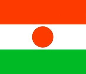 Флаг Нигера: фото, история, значение цветов государственного флага Нигера