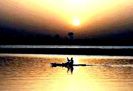 Герб Замбии: фото, значение, описание