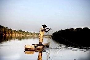 Реки Сенегала – фото, список, описание