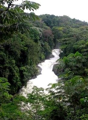 Реки Нигерии – фото, список, описание